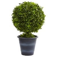 Nearly Natural 23-Inch Boxwood Ball Topiary in Black Ringed Planter