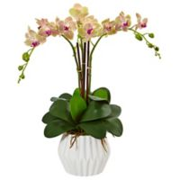 Nearly Natural 22-Inch Phalaenopsis Orchid in White Ceramic Pot