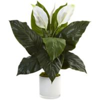 Nearly Natural 26-Inch Spathiphyllum in White Glass Pot