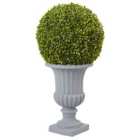 Nearly Natural 2.5-Foot Boxwood Ball Topiary Tree in White Urn