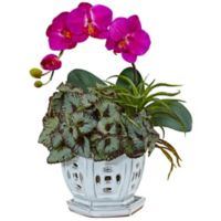 Nearly Natural 15-Inch Mini Phalaenopsis Orchid and Succulent in White Pierced Ceramic Pot