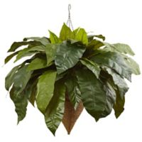 Nearly Natural 30-Inch Giant Birdsnest Fern Hanging Cone Basket