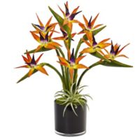 Nearly Natural 24-Inch Bird of Paradise in Black Glass Pot