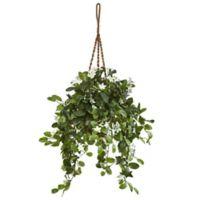 Nearly Natural 44-Inch Stephanotis in Hanging Basket