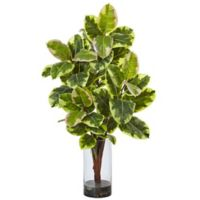 Nearly Natural 39.5-Inch Rubber Plant Arrangement in Glass Cylinder