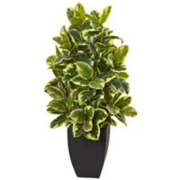 Nearly Natural 50-Inch Rubber Plant with Black Wash Planter
