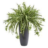 Nearly Natural 33-Inch Spider Plant in Grey Cylinder Planter