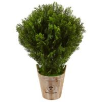 Nearly Natural 3-Foot Cedar Tree in Wood Bucket