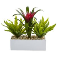 Nearly Natural 14-Inch Bromeliad and Birdsnest Ferns in White Rectangular Planter