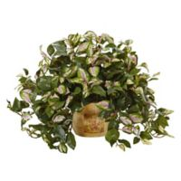 Nearly Natural 19-Inch Hoya Plant in Wooden Pot
