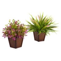 Nearly Natural 9-Inch Assorted Grass with Planters (Set of 2)