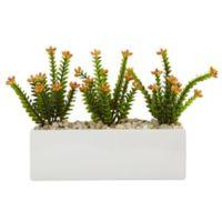 Nearly Natural 9.5-Inch Flowering Sedum in Rectangular Planter