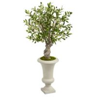 Nearly Natural 40-Inch Artificial Olive Tree in White Urn