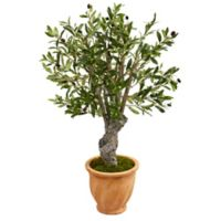 Nearly Natural 3-Foot Olive Artificial Tree in Terracotta Planter