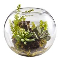 Nearly Natural 6.5-Inch Mixed Succulent Garden with Glass Vase