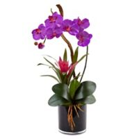 Nearly Natural 26-Inch Orchid and Bromeliad in Glossy Black Cylinder Planter in Purple