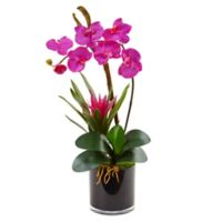 Nearly Natural 26-Inch Orchid and Bromeliad in Glossy Black Cylinder Planter in Dark Pink