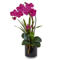 Nearly Natural 26-Inch Orchid and Bromeliad in Glossy Black Cylinder Planter in Multicolor