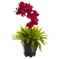 Nearly Natural 20-Inch Red Orchid and Birdsnest Plant in Hexagonal Wood Planter