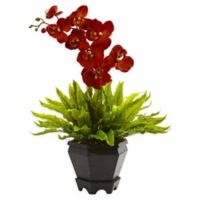 Nearly Natural 20-Inch Burgundy Orchid and Birdsnest Plant in Hexagonal Wood Planter