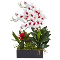 Nearly Natural 23.5-Inch Dendrobium Orchid and Bromeliad with Black Planter in White