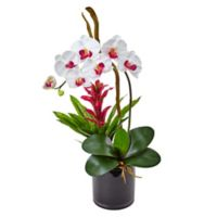 Nearly Natural 26-Inch White Orchid and Bromeliad Arrangement in Black Glass Pot