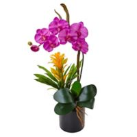 Nearly Natural 26-Inch Purple Orchid and Bromeliad Arrangement in Black Glass Pot