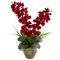 Nearly Natural 25-Inch Red Double Phalaenopsis Orchid in Glazed Clay Pot