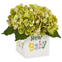 """Nearly Natural 9.5-Inch Green Hydrangea Arrangement in """"New Baby"""" Ceramic Cube"""