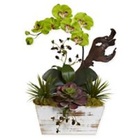 Nearly Natural 21-Inch Green Orchid & Succulent Garden in Whitewash Wood Planter Box