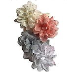 Curls & Pearls 4-Pack Gold Dot Flower Headbands in Ivory/Pink/Grey/White