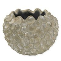 Sterling Industries Vivo Coral Texture Bowl in Whitewash