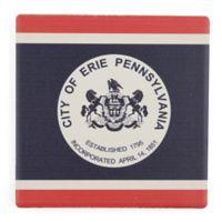 Thirstystone® Erie PA Single Coaster