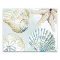 Artissimo Designs™ Art Shells 20-Inch x 16-Inch Canvas Wall Art
