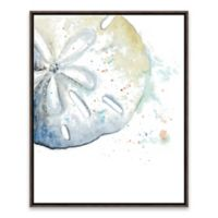 Artissimo Designs™ Water Sand Dollar 17-Inch x 21-Inch Framed Wall Art