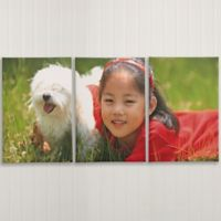 Photo Canvas Split-Panel 3-Piece Canvas Print