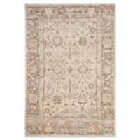 Safavieh Caden Traditional 4' x 6' Area Rug in Brown