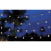 50-Bulb LED Café String Lights in Warm White