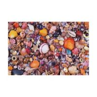 Piatnik Seashells 1000-Piece Jigsaw Puzzle