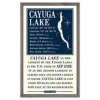 Cayuga Lake 15-Inch x 24-Inch Framed Wall Art