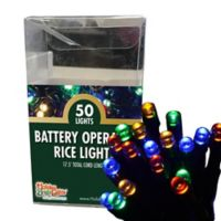 Holiday Bright Lights® 50-Light Battery-Operated Light Set in Multicolor