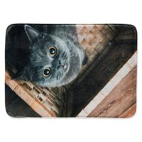 Pets@Heart Whimsical Whiskers Ms. Grey 1'6 x 2'6 Kitchen Mat