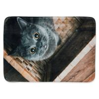 Pets@Heart Whimsical Whiskers Ms. Grey 2'6 x 3'6 Kitchen Mat