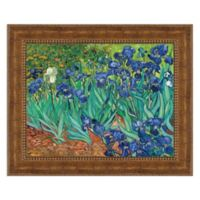 """Irises"" 34.25-Inch x 28.25-Inch Framed Canvas Replica Wall Art"