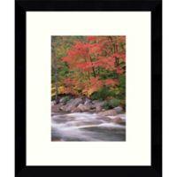 Amanti Art Autumn Along Swift River 9-Inch x 11-Inch Framed Wall Art