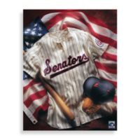 MLB Washington Nationals Vintage Collage Canvas Wall Art