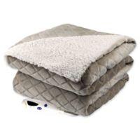 Biddeford® Velour Sherpa Digital Heated Blanket in Taupe