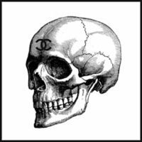 """Marmont Hill Art Collective """"Skull Black"""" 18-Inch x 18-Inch Framed Canvas Print Wall Art"""