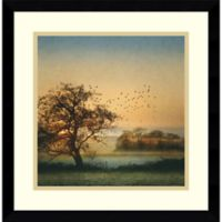 Amanti Art Good By Day Birds 17-Inch Square Framed Wall Art