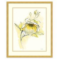 Amanti Art Carol's Roses V 19-Inch x 23-Inch Framed Wall Art